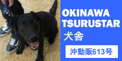 沖縄ツルスター犬舎